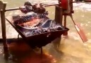 River powered spit roast! How cool is that Pure engineering