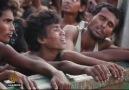 Rohingyas stranded at sea