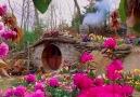 Rozina Juhsz - The Real Hobbit Village in Matamata New...