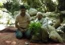 ŞAHIM Husameddin-