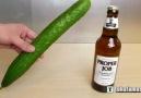 Salatalık ile nasıl şişe açılır ?