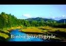Salipazari & Çevre Köyleri