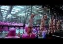 Samsara isimli 2011 yapimi olan belgeselin en carpic
