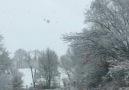 Samsun Ladikte kar yağması ile oluşan doğa harikası