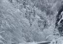 Sanki Hiç Kış Görmemiş Gibiyim Nefesim... - Uçan Kemençeci Fan Sayfası
