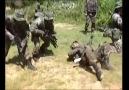SAT Komandoları- Cehennem Haftası (Gözünüz Asker Görsün)