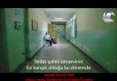 SEDAT ŞAHİN FAN - SEDAT ŞAHİN REİS 24 Facebook