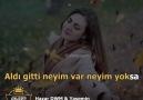 Sen Anlat Karadeniz Sevenleri le 8 janvier
