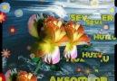 Sevdalı Güller - Akşam Mutlu Facebook