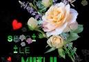 Sevdalı Güller - En Güzel Akşamlar Facebook