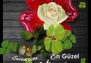 Sevdalı Güller - iyi akşamlar Facebook