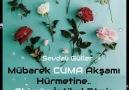 Sevdalı Güller - Mekanları Cennet Olsun Facebook