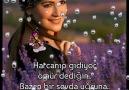 Sevdalı Güller - Oy Gülüm Gülüm Facebook