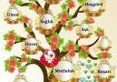 Sevgi Çiçeği - Sevgi Çiçeği Facebook