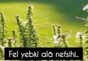 SEVGISIZ OMUR NEDIR KI - Mehmet Fatih Hatipoğlu