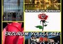 Sezai YANIKSES Erzurumun Gülüsen Cavit ÇOLAK