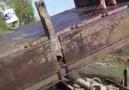 Sezer Çelik - Havuz keyfi