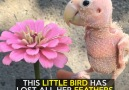 Shes perfectly imperfectCredit Rhea The Naked Birdie
