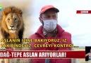 Show Ana Haber - DAĞ-TEPE ASLAN ARIYORLAR - YAHYALI KÖY - ÖNCE KAZA SONRA KAVGA
