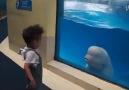 Şımarık balina :)