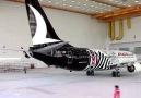Siyah Beyaz renklerde giydirilen armalı Beşiktaş uçağı