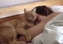 Sleeping with a cat
