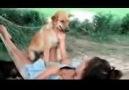 Smart Girl Training Dog Eat Food On Her