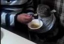 soğuk hava da sıcak çorba güzel olur
