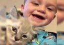 Sosyal medyada beğenilme rekorları kıran video Kediyle nasıl konuşulur