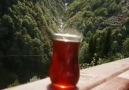 53 sosyete Rize - Manzarada içilen çayın tadı bambaşkadır