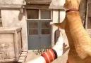 Special Force 2 Cat Gun