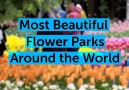 Stay Here Forever - Most Beautiful Flower Parks Around the World Facebook