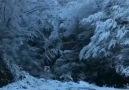 Şu dağlarda kar olsaydım olsaydımArar... - Yurdum28GireSUNUM