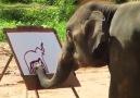 Suda - The Painting ElephantCredit