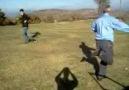 sünnetçiler köyünde baba ve oğulun oyunu