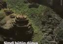 Tasarımlar - Çiftçinin biri kayalıkların içinde bir delik...