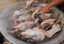 Tasty Rural - Amazing woman catch and cook ten ducks for dogs eating! Facebook