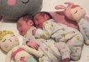 Tatlılık abidesi ikizler...