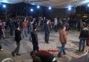 TAVAS EFELERİ- HD Quality- Stüdyo Mehmet / TAVAS