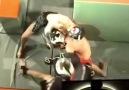 Team Parkour MMA
