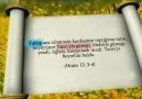 Tevrat'ta Allah'a ve peygamberlere atılmış iftiralar!