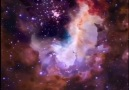 The Cosmic Studio - Fly-through of the Gum Nebula 29 Facebook