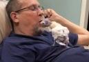 The Dodo - Guy Has The Cutest Bond With A Bald Little Cockatoo Facebook