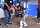 the futur of MMA