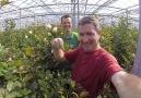 The Netherlands: Deaf Horticulturist
