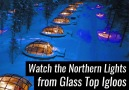 These Glass Top Igloos Look So Relaxing!
