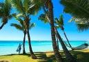 The tropical island of Mauritius looks like paradise