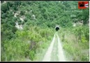 - they entered a road tunnel with endless loop can they come out alive
