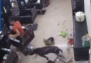 This cat and dogs play time turns into a big mess! Via ViralHog
