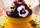This Flower Pot Is Actually A Delicious Cake